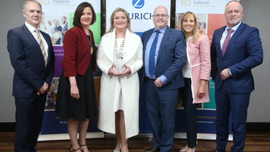 Loca authorities award South Dublin Chamber, South Dublin County Council